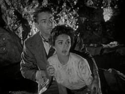 invasion-of-the-body-snatchers-1956-01-11-46.jpg