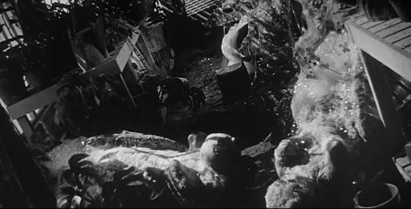 invasion-of-the-body-snatchers-1956-pods-hatching-greenhouse